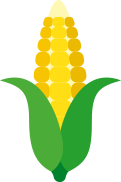 Vector image of corn